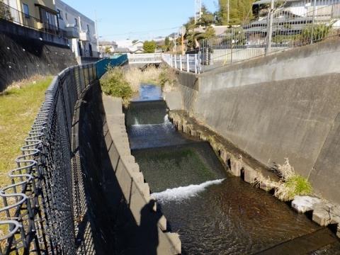 新戸雨水調整池北側の鳩川