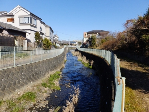 上新橋より鳩川上流を望む