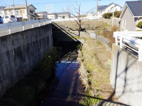 相陽橋より鳩川上流を望む