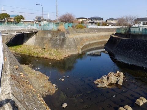 鳩川・姥川合流点