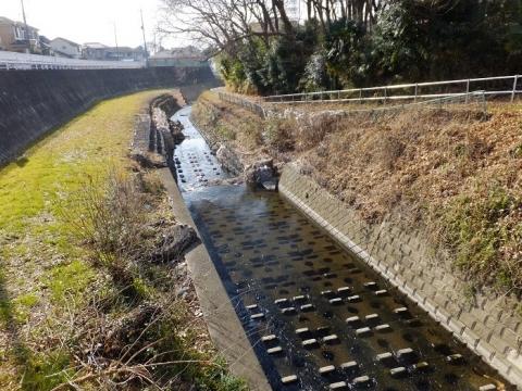 県道52号線より鳩川下流を望む