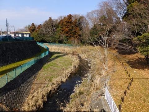 新一の沢橋より鳩川上流を望む