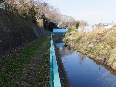 新一の沢橋上流の鳩川