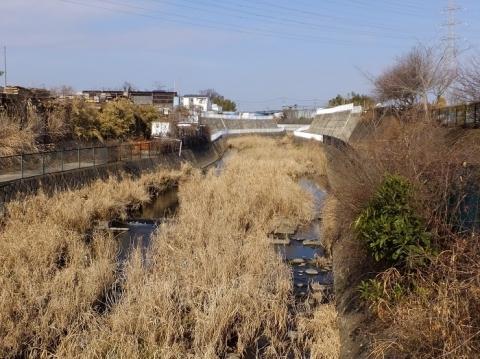 一の沢橋より鳩川上流を望む