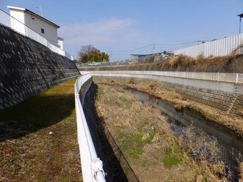 鳩川・諏訪橋下流