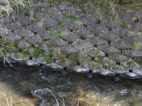 諏訪橋上流の鳩川・左岸のブロック護岸