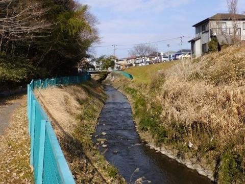 番田橋下流の鳩川