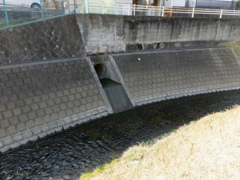 八幡橋上流の鳩川