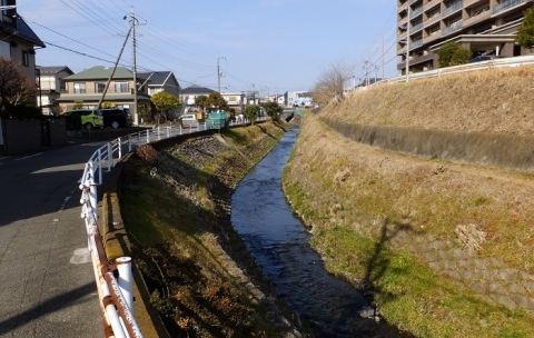 今橋より鳩川上流を望む