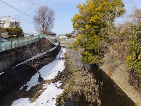千年橋より鳩川上流を望む