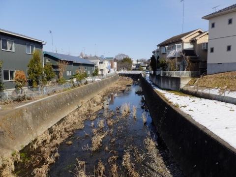 長瀞橋より鳩川上流を望む