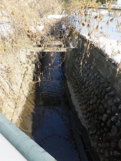 内出橋より鳩川下流を望む