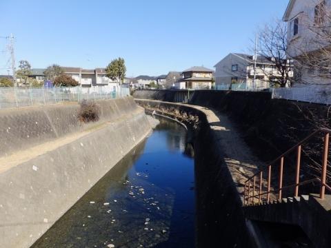 新中丸橋より姥川上流を望む