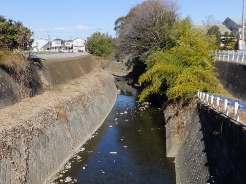 下古山橋より姥川上流を見る
