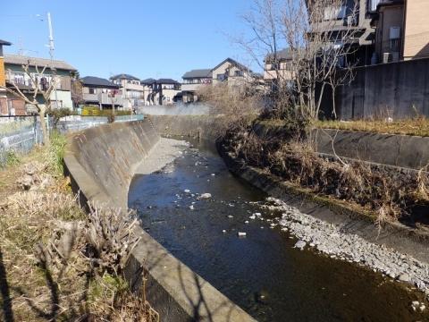 姥川・かじこ橋上流