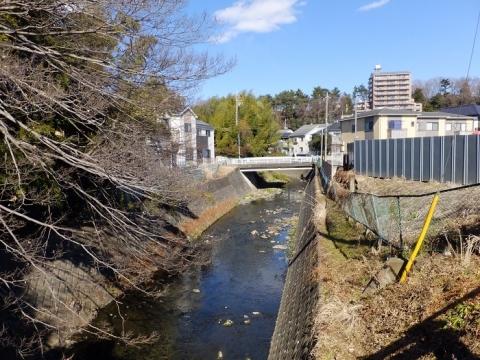 丸崎橋より姥川上流を望む