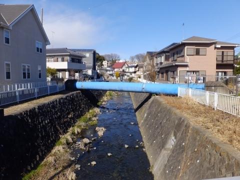 田中橋より姥川上流を望む