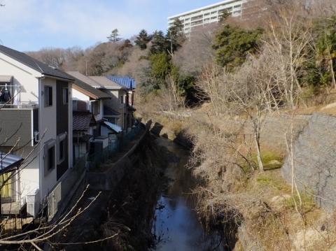 日金沢橋より姥川上流を望む