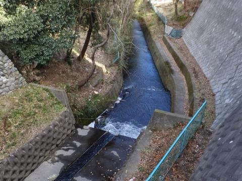 幸来橋より姥川下流を見る