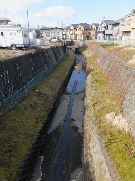 幸来橋より姥川上流を見る