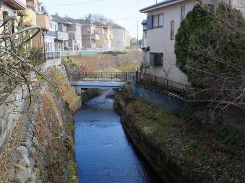 姥川第一雨水幹線吐口より下流を見る