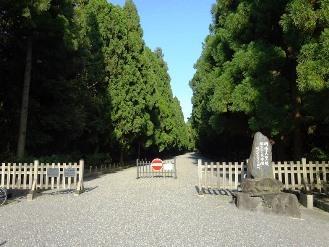 hushimimomoyama15.jpg