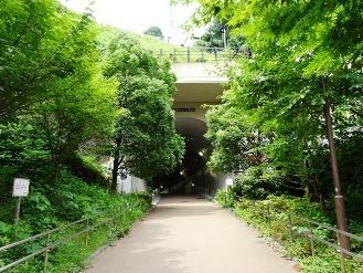 kanagawa10.jpg