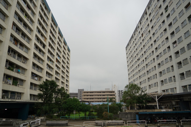 NISHIDAI15.jpg