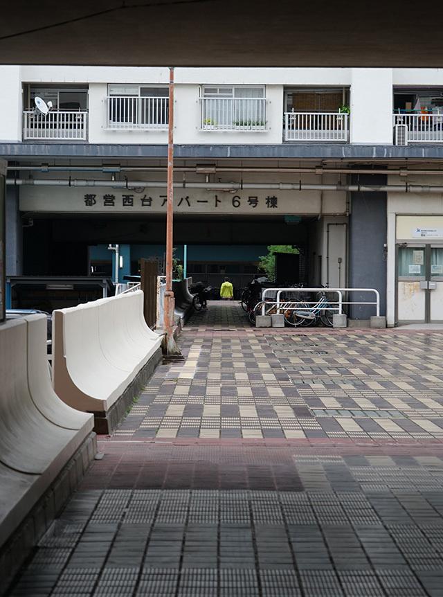 NISHIDAI21.jpg
