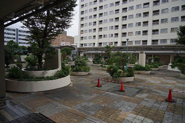 NISHIDAI23.jpg