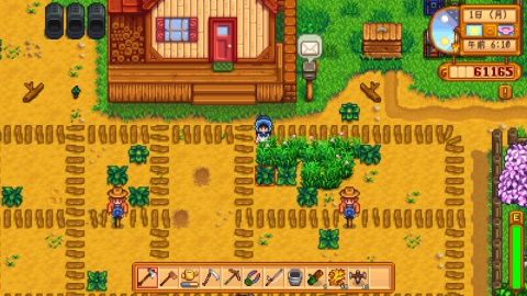 farm_2years_spring.jpg