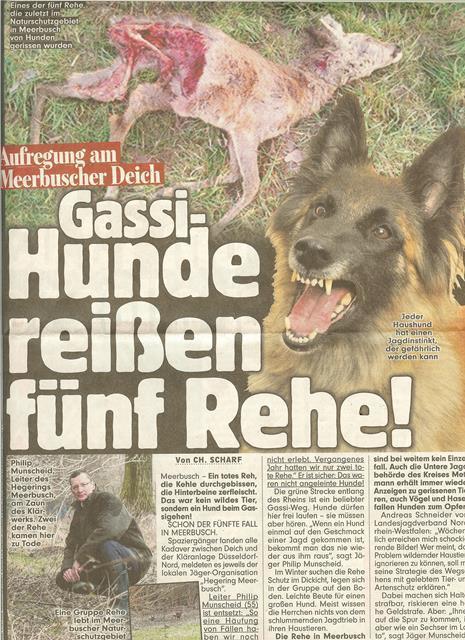 ドイツ 野犬被害