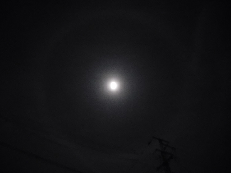 月の輪3001