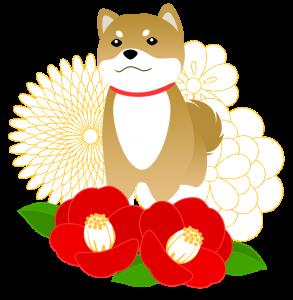 dog_8_1_1.png