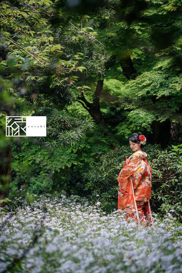 鎌倉新緑前撮り16