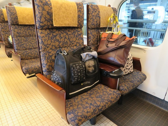 6D01 九州新幹線 つばめ11時40分 0102