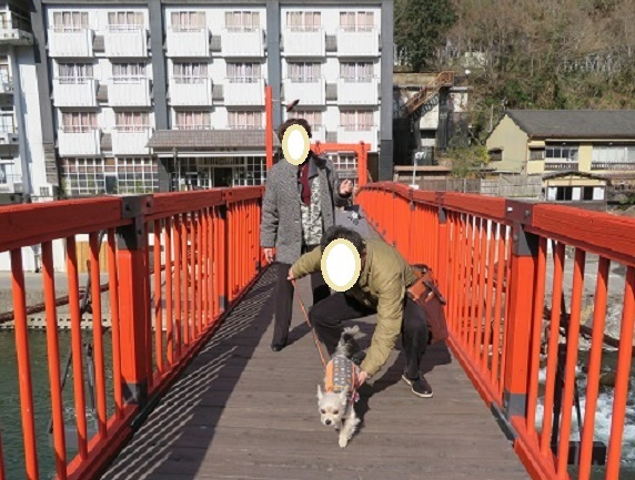 7M11S 吊り橋 0103