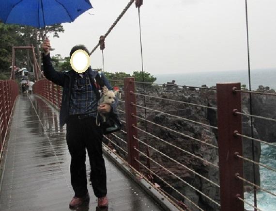 9G04S 橋立吊橋 1028