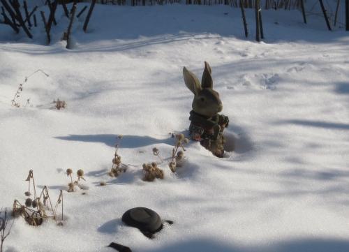 雪の中のうさぎ
