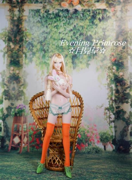 Carrot01.jpg