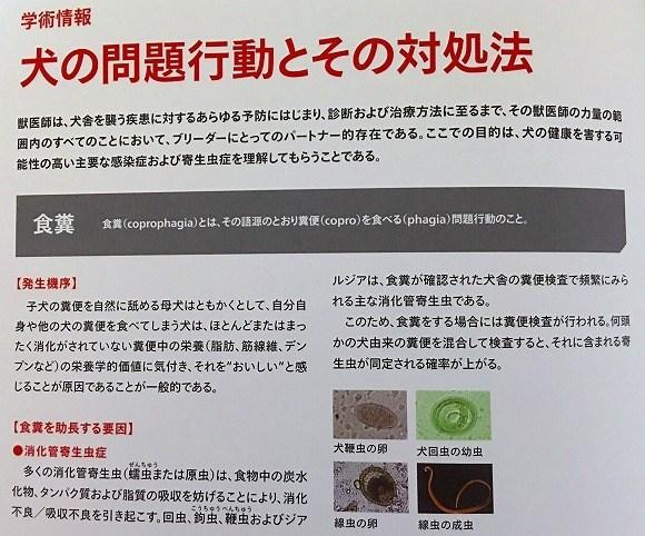 syoku-3.jpg