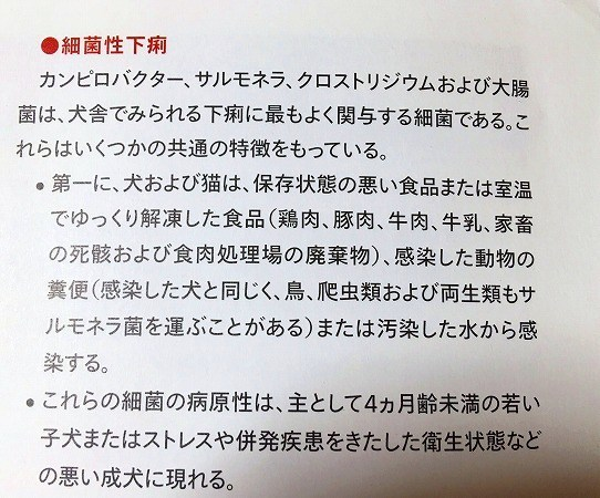 yuki-11.jpg