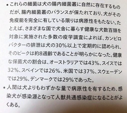 yuki-12.jpg