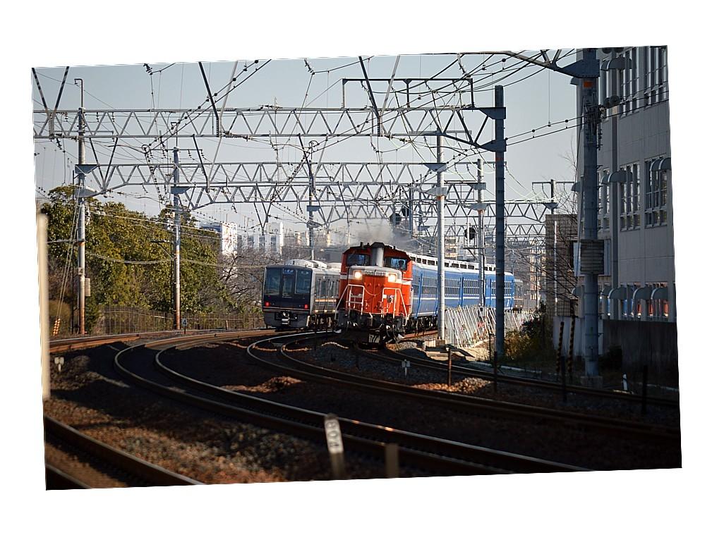 DSC_3413s.jpg