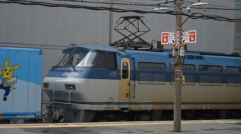 DSC_3507v.jpg