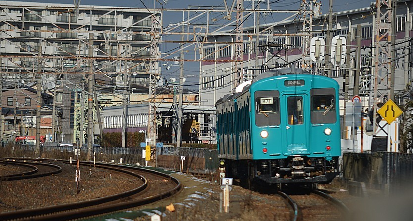 DSC_3754r.jpg