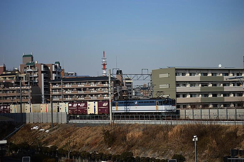DSC_4962s.jpg