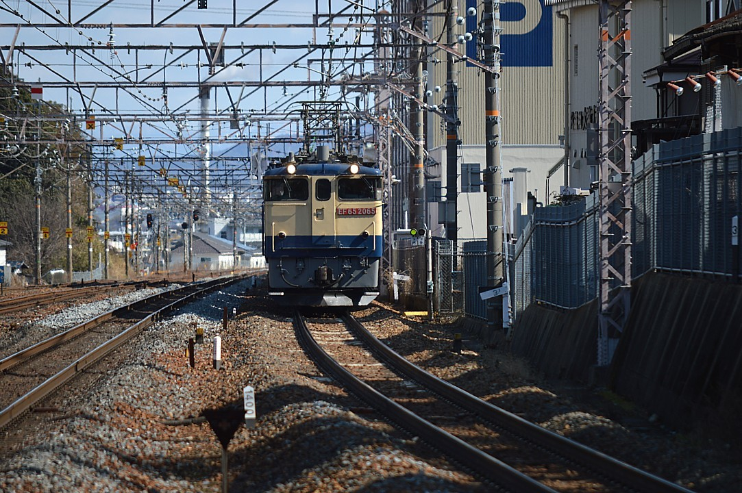 DSC_5266v.jpg