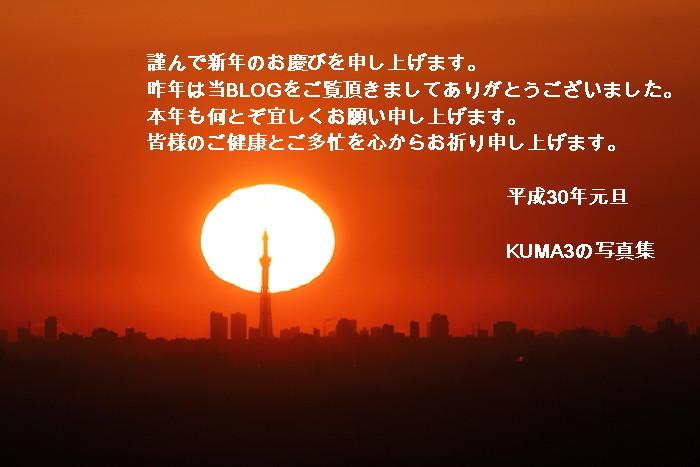 IMG_8417-30.jpg