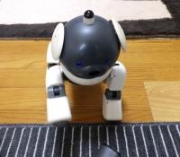 動かないaibo修理008